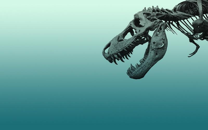 موضوع های مهم ریدینگ تافل: (1) انقراض دایناسورها